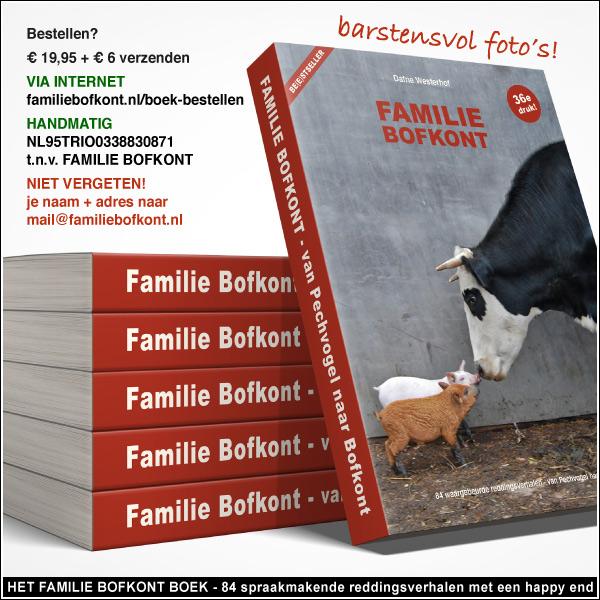 KIJK https://bofkontboek.nl/boek-bestellen.jpg